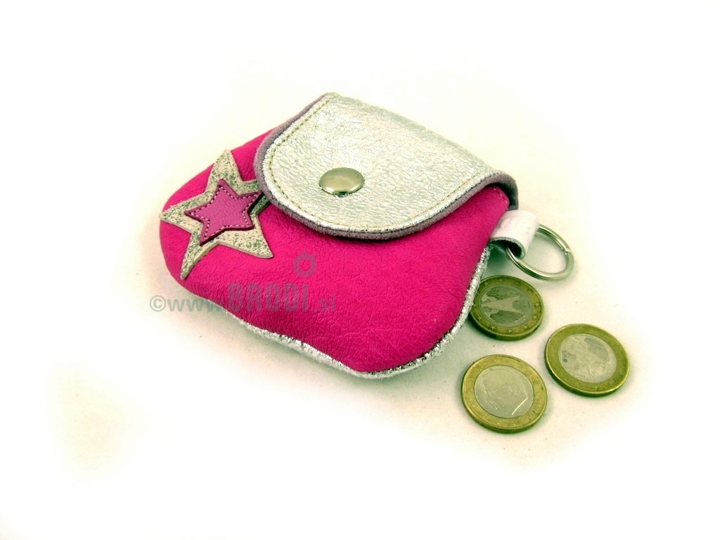 Coin Purse with Star